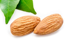 Almonds with leaves. Royalty Free Stock Images