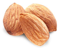 Almonds with leaves isolated. Royalty Free Stock Image