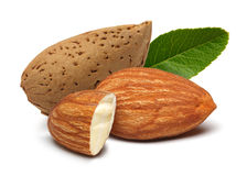Almonds and leaves Royalty Free Stock Photography