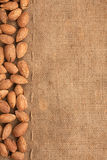 The almonds lying on burlap Stock Images