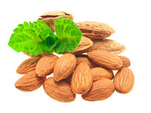 Almonds & mint. A pile of shelled and unshelled almonds, with a sprig of mint. On a white background Stock Image