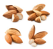 Almonds nuts collection Stock Photography