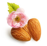 Almonds nuts with flower isolated Royalty Free Stock Photos