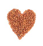 Almonds nuts in heart shape. Stock Images