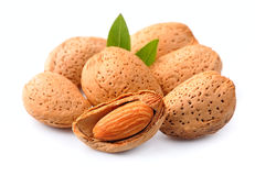 Almonds nuts with leaves Royalty Free Stock Images