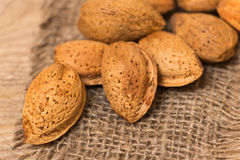 Almonds nuts Royalty Free Stock Image