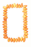 Almonds photo frame Royalty Free Stock Image