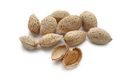 Almonds in the pod Royalty Free Stock Photography