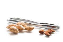 Almonds (Prunus dulcis) Stock Photos