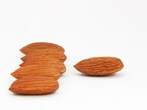 Almonds in a row Stock Images