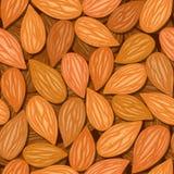 Almonds seamless background Royalty Free Stock Photos