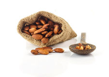 Almonds seed on white Royalty Free Stock Images