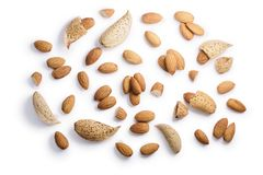 Almonds seeds P. amygdalus, paths, top view Stock Image