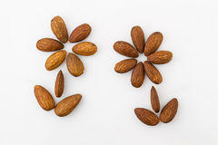 Almonds in the shape of a flower Royalty Free Stock Photos