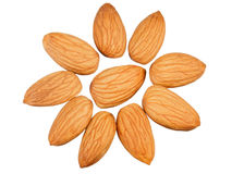 Almonds in the shape of a sun Royalty Free Stock Photos