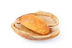 Almonds in shell. On white background Royalty Free Stock Image