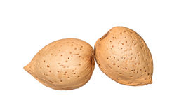 Almonds in shell isolated Stock Photography
