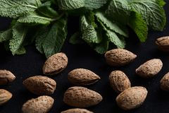 Almonds in shell with mint leaves on black background with copy space closeup.  Stock Photo