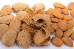 Almonds in shell and peeled Stock Photography