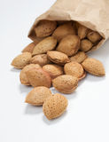 Almonds in a shell Royalty Free Stock Images
