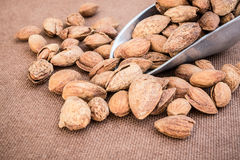 Almonds in shell on wooden table Royalty Free Stock Photos