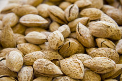 Almonds In Shells. Closeup of a heap of almonds toasted in shells. Shallow depth of field Stock Images