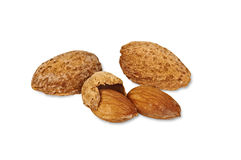 Almonds in Shells Stock Photography