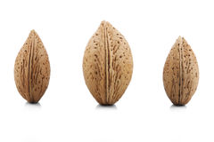 Almonds in shells Stock Photos
