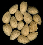 Almonds in shells on black backround Royalty Free Stock Photography