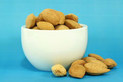 Almonds with shells Stock Image