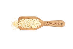 Almonds on shovel Stock Photography