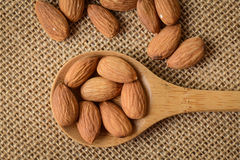 Almonds on a Spoon Stock Image