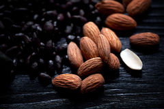 Almonds and sunflower seeds in chocolate on a dark background. Studio. Royalty Free Stock Photography