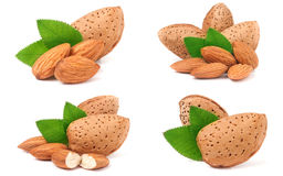Almonds in their skins and peeled with leaf isolated on white background. Set or collection.  Stock Photo
