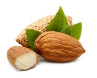 Almonds in their skins and peeled with leaf isolated on white background. Set or collection. stock images