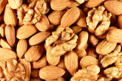 Almonds and walnuts royalty free stock image