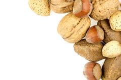 Almonds, walnuts, brazil nuts and hazelnuts in shells Stock Photography
