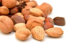 Almonds, walnuts and hazelnuts Stock Image