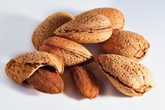 Almonds. With white background. Bitter temptation Stock Image