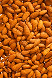 Almonds on the white background Stock Photography