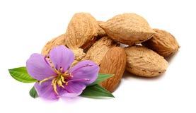 Almonds on white.