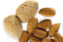Almonds With And Without Shells Stock Images