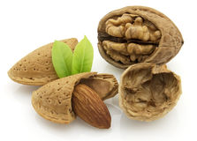 Almonds With Walnut Royalty Free Stock Images