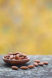 Almonds in wooden bowl Stock Images