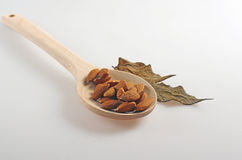 Almonds  in a wooden spoon. Royalty Free Stock Photos