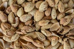 Almons e coperture più crudi del seme Immagini Stock Libere da Diritti