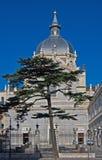 almudena大教堂de la 3月实际圣诞老人 库存图片