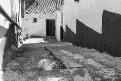 Almudevar (l'Aragona, Spagna) Fotografia Stock