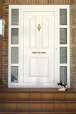 Almudevar (l'Aragona, Spagna) - porta e gatto Immagini Stock Libere da Diritti