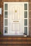 Almudevar (l'Aragona, Spagna): porta e gatto Fotografia Stock